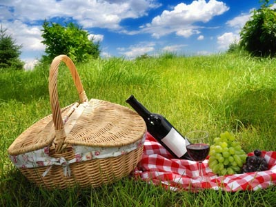 Picnic - Kharkov city sights